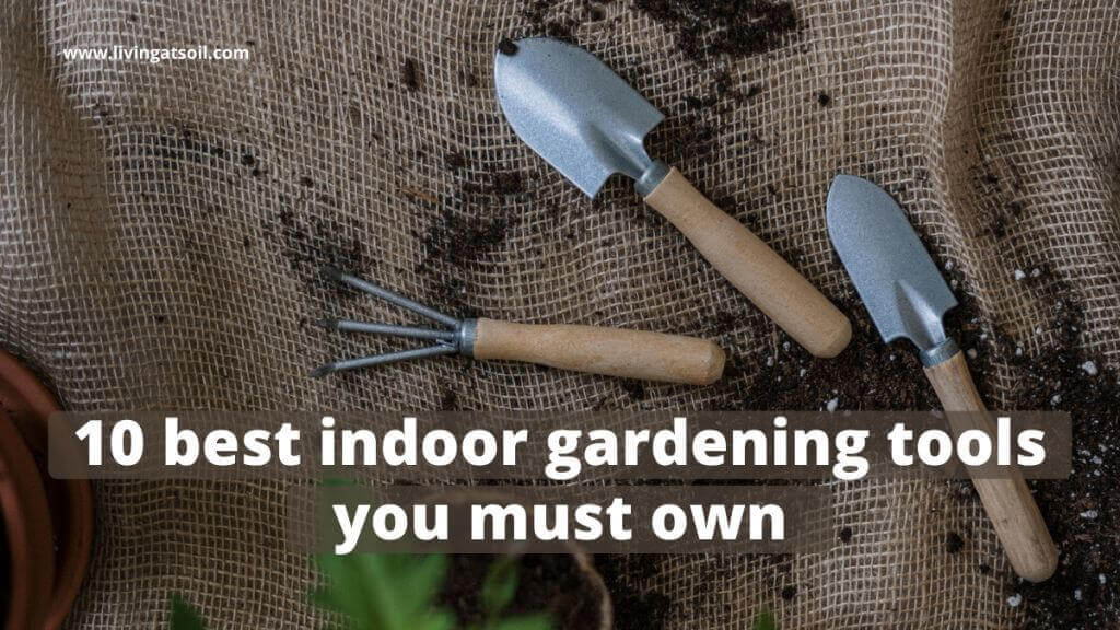 best indoor gardening tools for plants