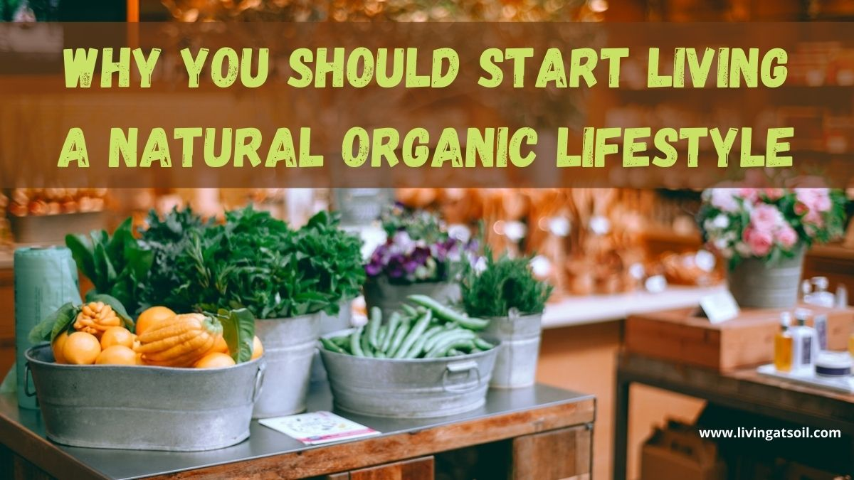 Living A Natural Organic Lifestyle